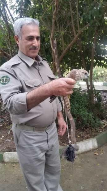 تخریب بیش از ۲۰۰ مورد تله کارگذاشته شده برای شکار غیر مجاز