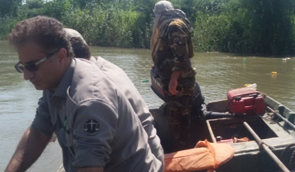 رودخانه کیارود از دام  پاکسازی شد